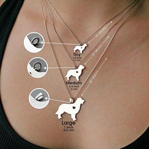 Personalized Dog Necklaces